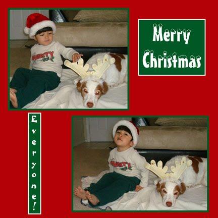 Merry Christmas (and a Christmas Tree Cake)