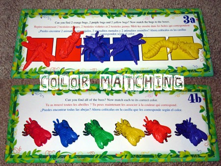 Bug Color Matching Learning Activity for Kids
