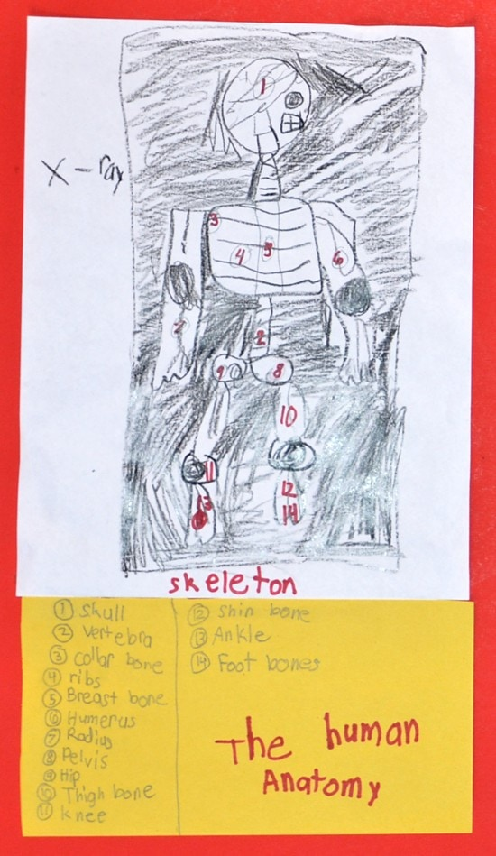 Handprint X-Ray - Letter X Craft