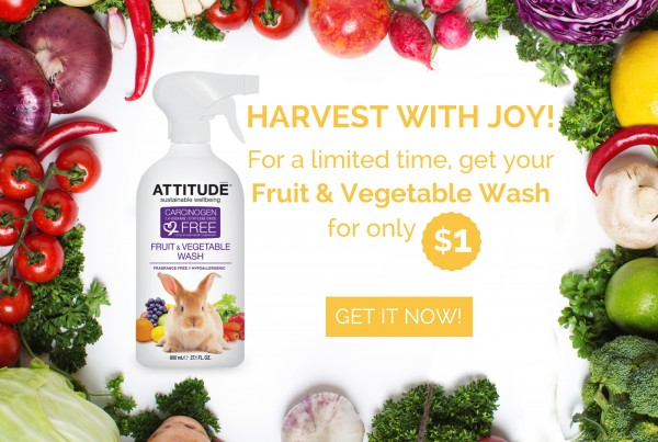 ATTITUDE Fruit & Vegetable Wash